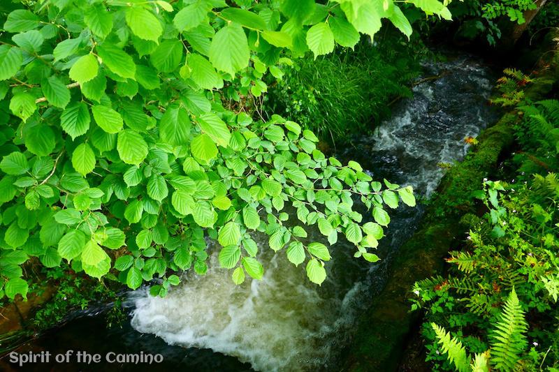 Pretty little streams like this one are common on the Camino Primitivo.